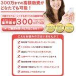 ARIは東京都港区新橋2-11-7の闇金です。